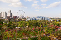 Singapore, panorama view - big wheel, hotel's buildings, parks. Stock Photography