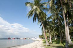 Singapore Paser Ris beach Royalty Free Stock Photo