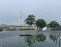 Singapore reklamblad i regn Arkivfoton