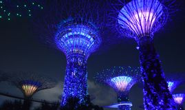 Singapore's supertrees royalty free stock images