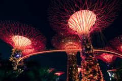 SINGAPORE - SEP 15, 2017 : Supertree Grove at Gardens by the Bay, Singapore. SINGAPORE - SEP 15, 2017 : Night view of Supertree Grove at Gardens by the Bay royalty free stock photography