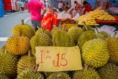 SINGAPORE, SINGAPORE - JANUARY 30. 2018: Close up of durian fruit, the famous tropical fruit in asian countries with its. Thorny skin but delicious and tasty stock photo