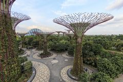 Tourists walking in the Supetree Grove area at the Gardens by the Bay in Singapore. Singapore, Singapore - October 16, 2018: Tourists walking in the Supetree royalty free stock images