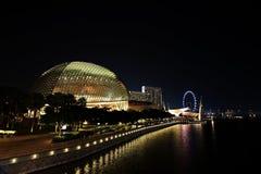 Singapore Skyline. With Esplanade night cityscape royalty free stock photo