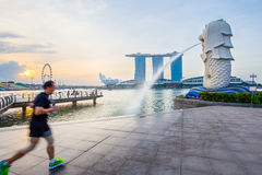 Singapore skyline and Merlion with sunrise Stock Photos
