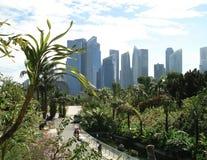 Singapore skyskrapasikt från parkera royaltyfri foto