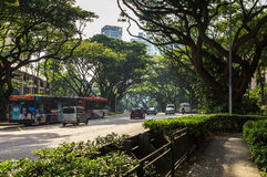 Singapore street. `orchard boulevard`, drowning in greenery. Showing the wide boulevard like street scene with modern cars, taxis. Large trees covering the sky Royalty Free Stock Photos