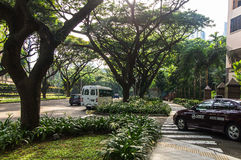 Singapore street. `orchard boulevard`, drowning in greenery. Showing the wide boulevard like street scene with modern cars, taxis. Large trees covering the sky Stock Images