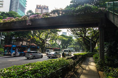 Singapore street. `orchard boulevard`, drowning in greenery. Surrounded by modern houses. Showing the wide boulevard like street scene with modern cars, taxis Royalty Free Stock Images
