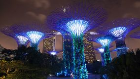 Singapore Supertree Grove night clouds time-lapse. 4k stock video footage
