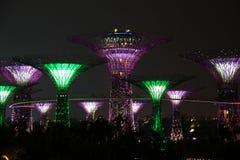 Singapore Supertrees alla notte Immagini Stock