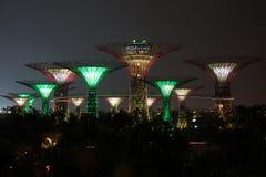 Singapore Supertrees alla notte Fotografie Stock Libere da Diritti