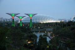 Singapore Supertrees alla notte Fotografie Stock