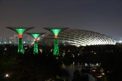 Singapore Supertrees alla notte Immagine Stock Libera da Diritti