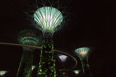 Singapore Supertrees in Gardens by the Bay Stock Photo