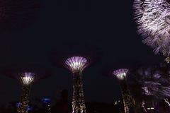 Singapore Supertrees i trädgårdar vid fjärden Royaltyfri Fotografi