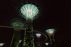 Singapore Supertrees i trädgårdar vid fjärden Arkivfoto