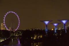 Singapore Supertrees i trädgårdar vid fjärden Royaltyfri Bild