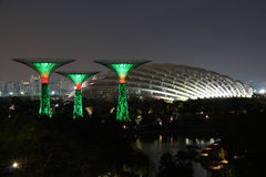 Singapore Supertrees At Night Royalty Free Stock Image