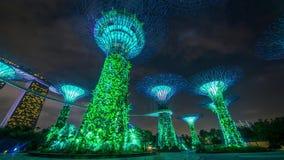 Singapore supertrees night show Timelapse 4k. Singapore supertrees night show Timelapse stock footage