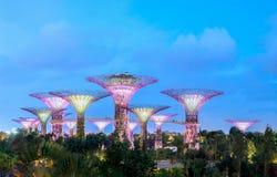 Singapore Trädgårdar vid fjärden är en parkera som spänner över 101 hektar av Arkivbilder
