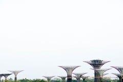 Singapore trädgårdar vid fjärden nära marinafjärdsander Royaltyfri Fotografi