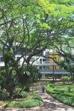 singapore widok zdjęcie royalty free