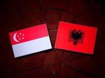 Singaporean flag with Albanian flag on a tree stump isolated Royalty Free Stock Photo