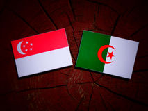 Singaporean flag with Algerian flag on a tree stump isolated Stock Photos