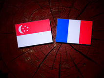 Singaporean flag with French flag on a tree stump isolated. Singaporean flag with French flag on a tree stump Stock Image