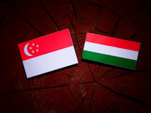 Singaporean flag with Hungarian flag on a tree stump isolated Stock Images