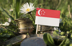 Singaporean flag with stack of money coins with grass Stock Photos