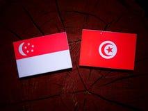 Singaporean flag with Tunisian flag on a tree stump isolated. Singaporean flag with Tunisian flag on a tree stump Royalty Free Stock Photos