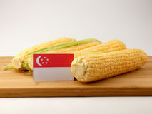 Singaporean flag on a wooden panel with corn isolated on a white stock images