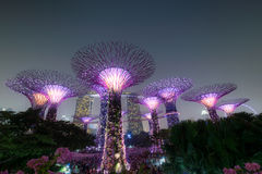 Singapour Photo libre de droits