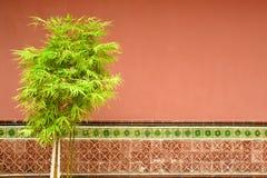 Singapour innerhalb Keng-Tempels Thian-weißen Rheinweins Stockbild