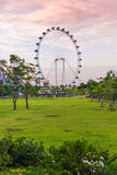 SINGAPOUR - 19 JUIN : Insecte de Singapour - plus grand Ferris Wheel i Images stock