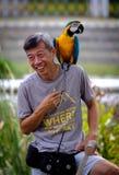 Singapour 23 MARS 2019 : Homme avec des perroquets se reposant sur l'épaule dans la forêt photographie stock