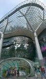 Singapour Orchad väg Arkivbilder