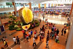 Singapour : T2 d'aéroport international de Changi Images libres de droits