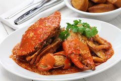Singapur chili krab Zdjęcia Stock