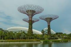 SINGAPUR - 12 DE MAYO: Jardines por la bahía el 12 de marzo de 2014 en Singap Foto de archivo libre de regalías