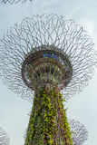 SINGAPUR - 12 DE MAYO: Jardines por la bahía el 12 de marzo de 2014 en Singap Fotos de archivo