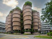 SINGAPUR - 24 DE NOVIEMBRE DE 2018: La colmena en la universidad tecnol?gica NTU de Nanyang El edificio fue concedido a Mark Plat imagen de archivo