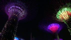 Singapur - 25 de noviembre de 2018: Vídeo de la vista nocturna de Supertrees en los jardines por la bahía almacen de video