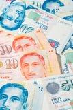 Singapur dolar, banknot Singapur na Białym tle Zdjęcia Royalty Free