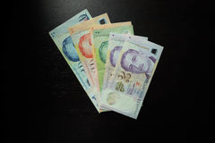 Singapur dolara banknot Obraz Stock