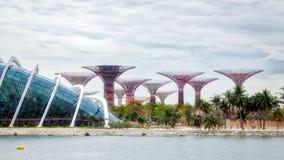 SINGAPUR - 3. FEBRUAR: Neue botanische Gärten unter Constructio lizenzfreies stockbild