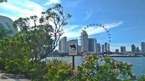 Singapur-Flieger | Gärten durch die Bucht stockbild