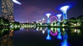 Singapur Flieger- und Supertree-Grove Reflexion stock footage